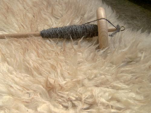 Spindel - Nahaufnahme